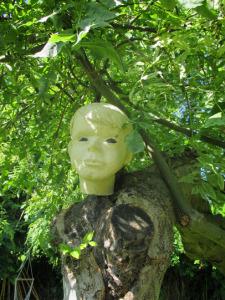 Kopf auf dem Baum